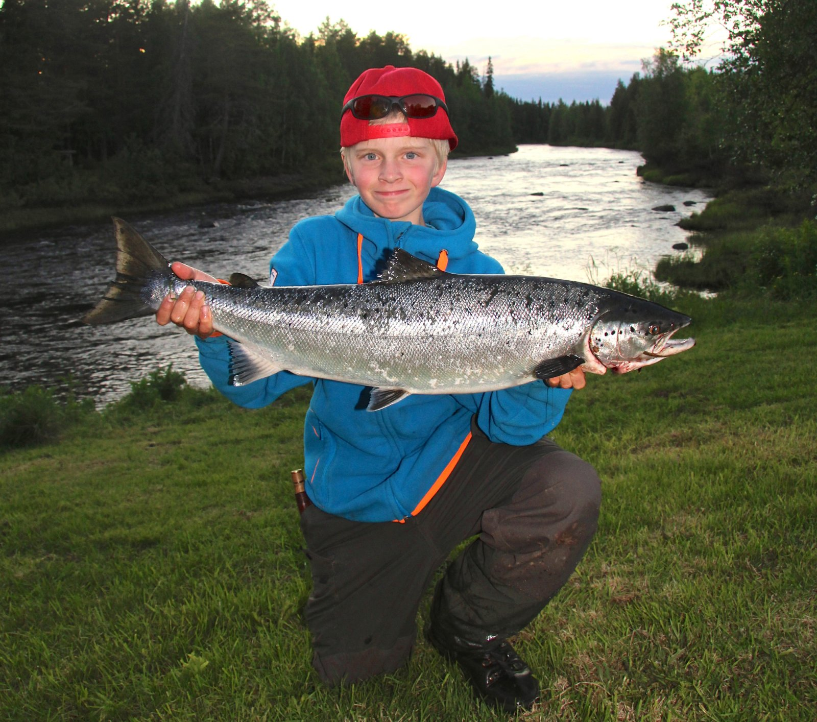 Salmon fishing in the Tornio River in Lapland is also a ...